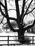 Rural snow scene Royalty Free Stock Images