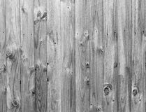 Monochrome wood panels background Royalty Free Stock Photos