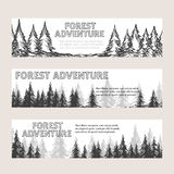 Monochromic horizontal banners with pine forest Stock Photo
