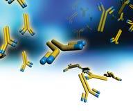 Monoclonal Antikörper lizenzfreie abbildung