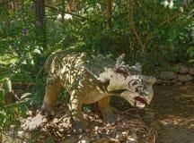 Monoclonius- /74 crétacé il y a million d'ans Dans le Dinopark Photographie stock