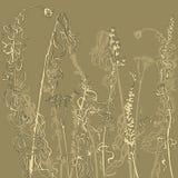 Monocromatico erbe del disegno a tratteggio illustrazione vettoriale