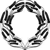 Monocrome zwarte tarwe om kader op witte achtergrond Royalty-vrije Stock Foto