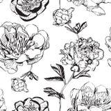 Monocromo asiático de las peonías de la tinta stock de ilustración