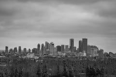Monocromo del horizonte del distrito financiero de Calgary imagen de archivo libre de regalías