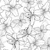 Monocromo hermoso, fondo inconsútil blanco y negro con los lirios y mariposas Líneas de contorno a mano Fotos de archivo libres de regalías
