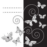 Monohrome bakgrund med fjärilar. Vektor illustration/EPS 8 Royaltyfria Bilder