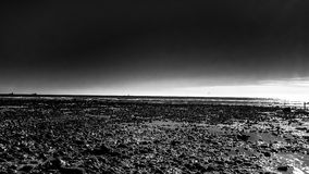 Monokrom av stranden royaltyfri foto