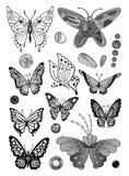 Monokrom fjärilsuppsättning Royaltyfria Bilder