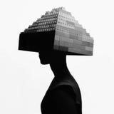 Monokrom flicka med frisyren för byggnadssats Royaltyfria Foton