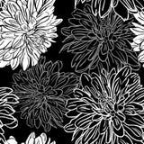 Monokrom sömlös bakgrund med blommor. Vektorillustration Royaltyfria Foton