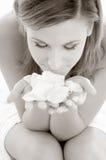 monokromma petals steg Arkivfoton