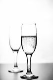 Monokromt foto av champagne på den vita tabellen på vit bakgrund Arkivfoton