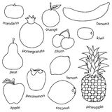 Monoline fruit set on white background Royalty Free Stock Image