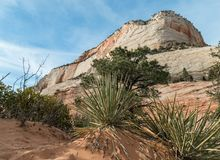 Monolith in Zion National Park. View from a walk through a wash, Zion National Park in Utah Royalty Free Stock Photo
