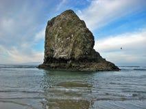 Monolithe de roche de plage de canon Photo libre de droits