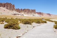 Monolithes géologiques près de Salar le Tara, Chili Photos libres de droits