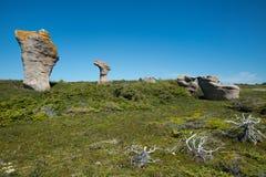 Monolithes på stor ile i den Mingan skärgården i Quebec i Kanada arkivfoto