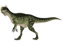 Monolophosaurus Stock Photo