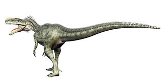Monolophosaurus back side. Monolophosaurus (meaning single-crested lizard) was a genus of theropod dinosaur from the Middle Jurassic (about 170 Ma) of the Stock Image