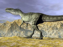 Monolophosaurus dinosaur in the desert - 3D render Royalty Free Stock Photography