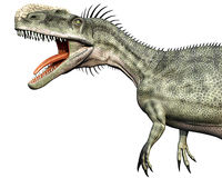 Monolophosaurus side close. Monolophosaurus (meaning single-crested lizard) was a genus of theropod dinosaur from the Middle Jurassic (about 170 Ma) of the Stock Photo
