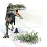 Monolophosaurus sign. Monolophosaurus (meaning single-crested lizard) was a genus of theropod dinosaur from the Middle Jurassic (about 170 Ma) of the Shishugou vector illustration