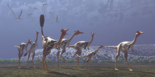 Mononykus Dinosaurs. Mononykus was a carnivorous dinosaur that lived in Mongolia in the Cretaceous Period. Here a flock of Pteranodons follow a group of Stock Images