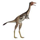 Mononykusdinosaurus die 3D bevinden zich - geef terug Stock Foto