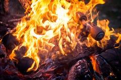 Monopatín ardiente fotos de archivo libres de regalías
