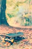 Monopatín viejo en parque de la ciudad del otoño Fotografía de archivo