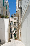 Monopoli alleyway. Apulia. Royalty Free Stock Images