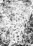 monoprint watercolour Zdjęcia Royalty Free
