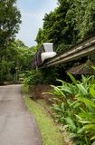 Monorail train in Tropical Forest Royalty Free Stock Images