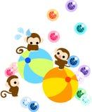 Monos bonitos que equilibran en una bola de balanceo Imagenes de archivo