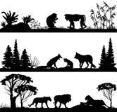 Monos de los animales salvajes, zorros, leones Fotografía de archivo