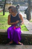 Monos que se sientan en un turista Imagenes de archivo