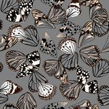 Monotone black and grey colors seamless pattern vectror of butterfly wing surface line hand drawing sketch dsign for fashion,. Fabric,web,wallpaper and all vector illustration