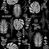Monotone black and white  botanical decoration flowers seamless. Pattern vector for fashion fabric ,wallpaper and all prints on black colors Stock Image