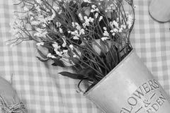 Monotone flower Royalty Free Stock Photos