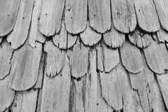 Monotone Gray Texture of old shingle Roof Royalty Free Stock Photos
