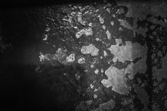 Monotone style background. Dirty old surface and empty space for text . Monotone style background. Dirty old surface and empty space for text royalty free stock photography