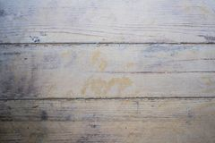 Monotone texture in cold colors. Monotone texture in cold colors of the wood Stock Image