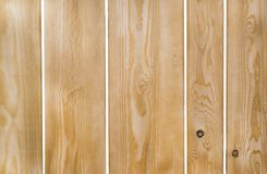 Monotone texture in cold colors of the wood. Wooden background Stock Images