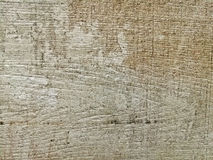 Monotone texture of the wood. Royalty Free Stock Photo