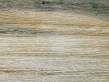 Monotone texture of the wood. Stock Photography