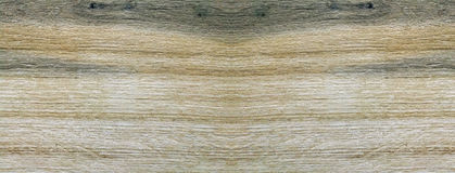 Monotone texture of the wood. Royalty Free Stock Photography