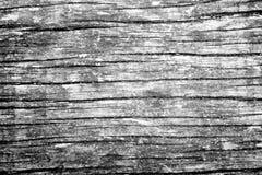 Monotone wood grain texture. Monotone textured horizontal wooden grain Royalty Free Stock Image