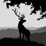 Monotonic illustration of an elk. On a landscape Royalty Free Stock Image