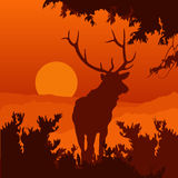 Monotonic illustration of an elk. On a landscape Royalty Free Illustration